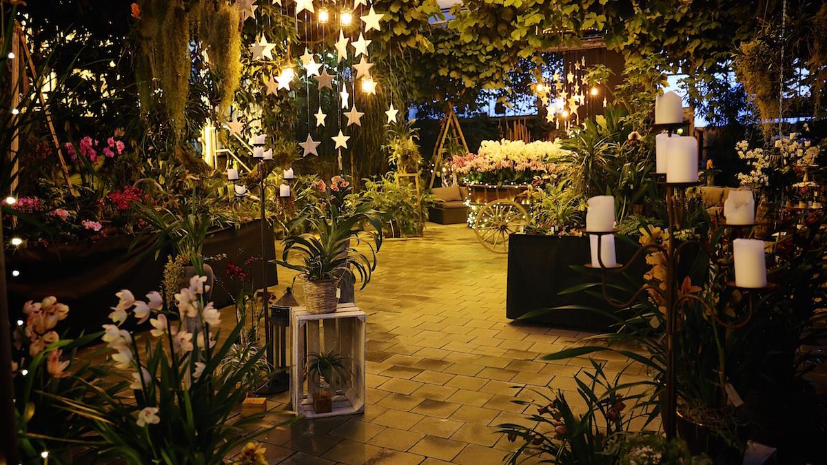 Maison orchidées